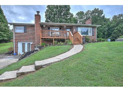 111 Mountain View Circle Hampton, TN MLS# 9911054