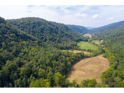 1235 State Route 604  Blackwater, VA MLS# 9913266