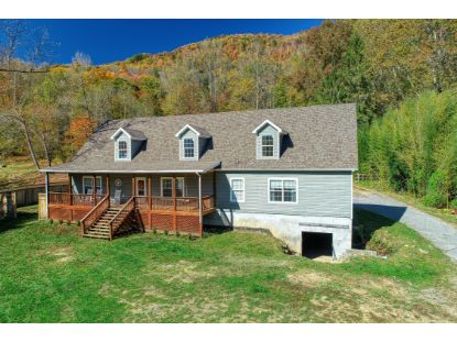1675 West Dawson Avenue Big Stone Gap, VA MLS# 9914992