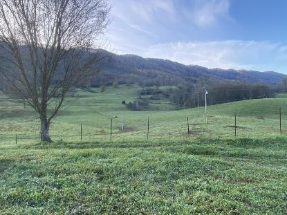 Tbd Veterans Memorial Highway Big Stone Gap, VA MLS# 9915249