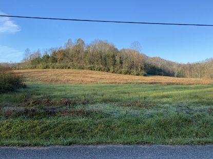 Tbd Cave Springs Road Big Stone Gap, VA MLS# 9915253