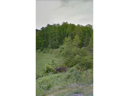 Tbd Little Wolf Run  Bristol, VA MLS# 9917859