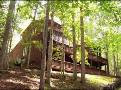 495 Moonshadow Trail Haysi, VA MLS# 9919004