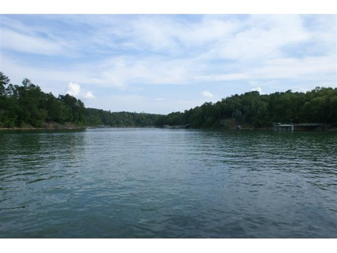 224 CO RD 907 (LOT 8), Crane Hill, AL 35053
