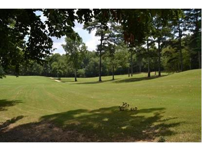 0 FAIRWAY DR. , Cullman, AL