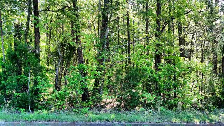 Lot 11 Benson Drive, Athens, TN 37303
