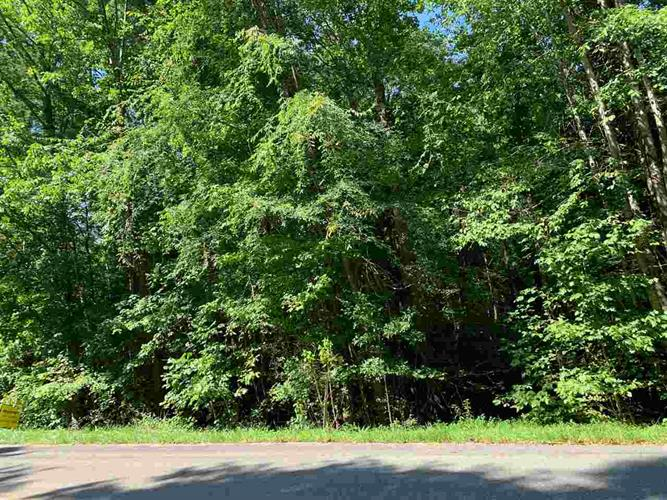 00 Sunrise Lane, Decatur, TN 37322 - Image 1