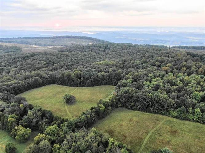 2392 Possum Trot, Grandview, TN 37337 - Image 1