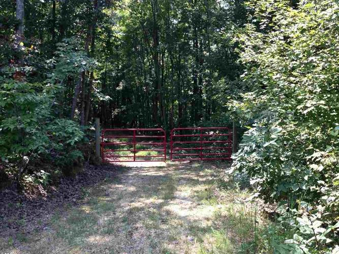00 County Road 51, Riceville, TN 37370 - Image 1