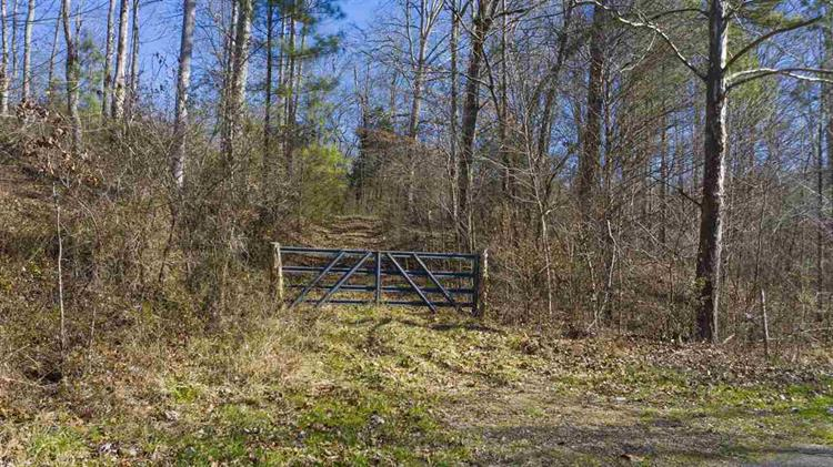 37.13 acres County Road 181, Athens, TN 37303 - Image 1