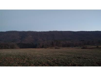 26.77 Acres County Road 875 Etowah, TN MLS# 20170431
