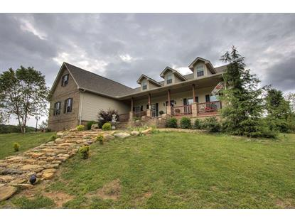 191 County Road 490 Etowah, TN MLS# 20172828