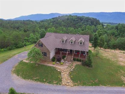 191 County Road 490 Etowah, TN MLS# 20172831
