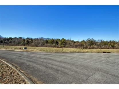 408 Cape Lookout Lgt, Loudon, TN