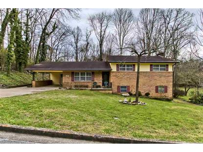 1313 Towanda Trail, Athens, TN