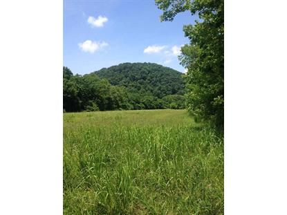 8.76 Acres Highway 39 E, Englewood, TN