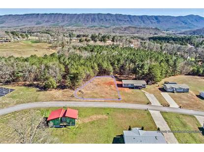 TBD Lifestyle Way Benton, TN MLS# 20191362