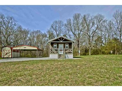 544 County Road 62 Riceville, TN MLS# 20191408