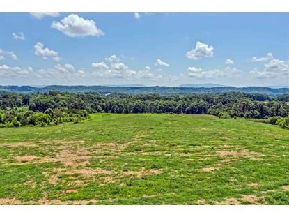 224 County Road 728 Riceville, TN MLS# 20191891