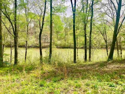 Lot 1 County Road 5 Woody Lane  Calhoun, TN MLS# 20192017