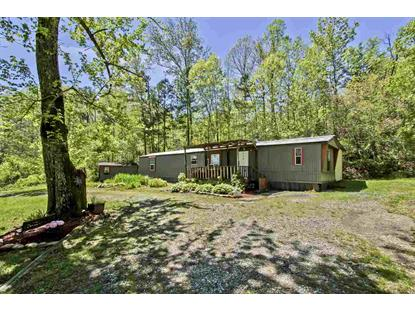 250 County Road 47 Riceville, TN MLS# 20192290