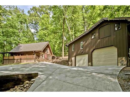 289 County Road 67 Riceville, TN MLS# 20192518