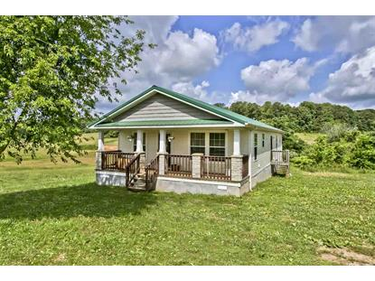 231 County Road 334 Niota, TN MLS# 20192737