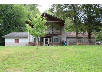 772 county road 319 Niota, TN MLS# 20193333