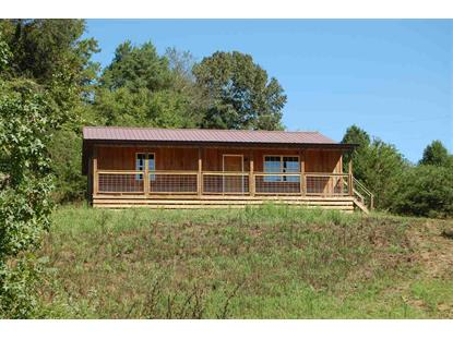 104 County Road 169  Athens, TN MLS# 20195208