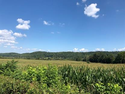 400-500 blk County Road 62  Riceville, TN MLS# 20195519