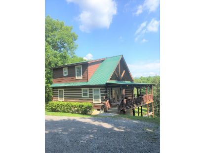 160 Parchcorn Lead  Reliance, TN MLS# 20205055