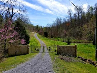 23Ac Lick Creek  Tellico Plains, TN MLS# 20205074