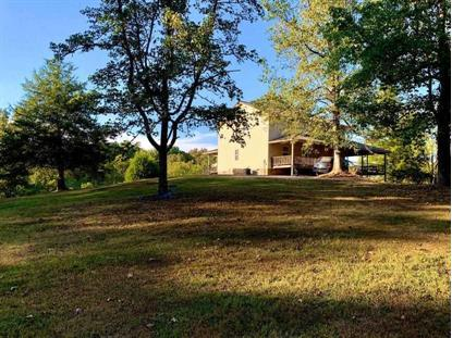 179 SE Wooten Road  Delano, TN MLS# 20205699