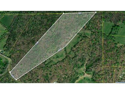 00 County Road 60  Riceville, TN MLS# 20205745