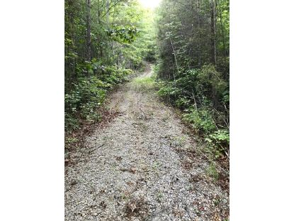 Lot 6 and 7 Steer Creek Road  Tellico Plains, TN MLS# 20206506