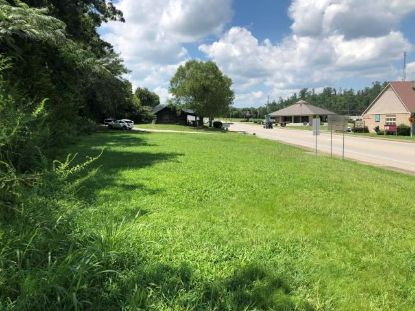 Lot 01 2 Cherohala Skyway  Tellico Plains, TN MLS# 20206686