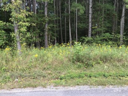 Lot 4 & 7 County Road 788  Etowah, TN MLS# 20207457