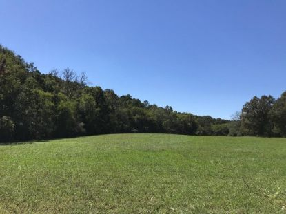 1189 County Road 20  Calhoun, TN MLS# 20207615