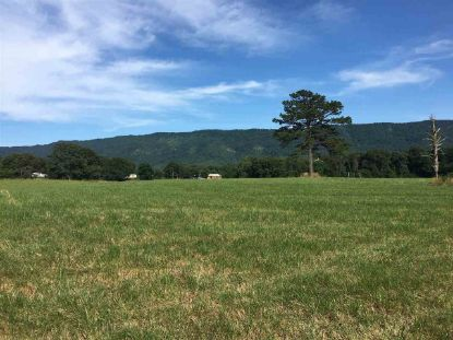 0 County Road 909  Etowah, TN MLS# 20209108