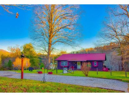 533 Epperson Road  Tellico Plains, TN MLS# 20209601