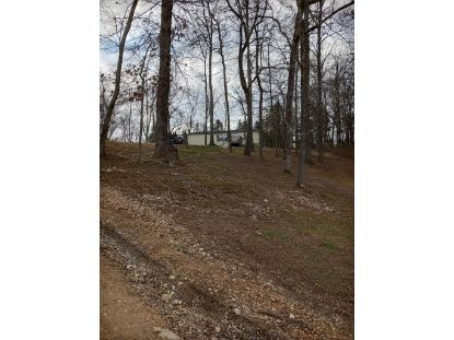 388 county road 266  Sweetwater, TN MLS# 20210374