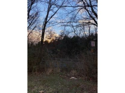 44.45 Ac Highway 11  Niota, TN MLS# 20210439