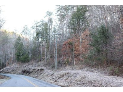 000 Fairview Road  Madisonville, TN MLS# 20210455