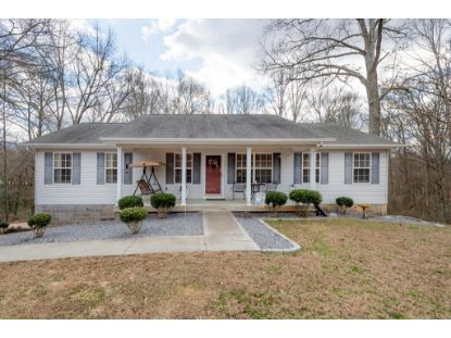 115 County Road 810  Etowah, TN MLS# 20210465