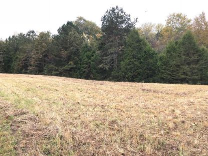 14.65 acres County Road 267  Niota, TN MLS# 20211135