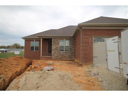 lot 13 Wellesly Court Cecilia, KY MLS# 10034306