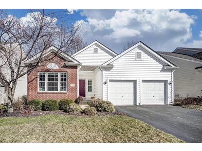 7192 Upper Albany Drive, New Albany, OH