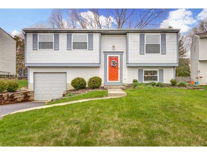 3756 Stirrup Court, Columbus, OH