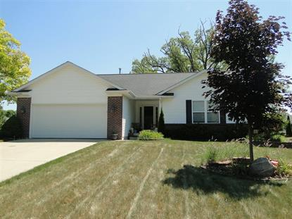 11386 Autumn Breeze Trail, Clio, MI