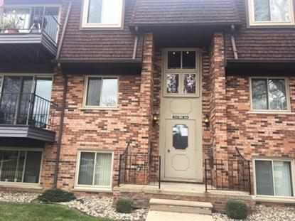 338 RIVIERA, Saint Clair Shores, MI